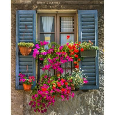 Pencere Önü Saksı ve Çiçekler Duvar Kağıdı