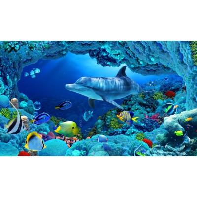 Deniz Altı Yaşam Balıklar Yunus Balıklı Duvar Kağıdı