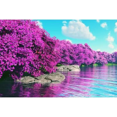 Mor Çiçekler Deniz Kaya Gökyüzü Duvar Kağıdı