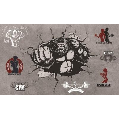 Duvardan Çıkan Goril Fitness Club Gym Spor Salonu Duvar Kağıdı