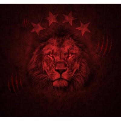 Kırmızı Aslan Taraftar Duvar Kağıdı